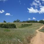 Blue Sky Along the Open Trail